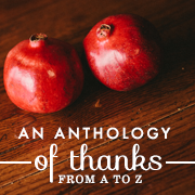 An Anthology of Thanks | Hannah Nicole